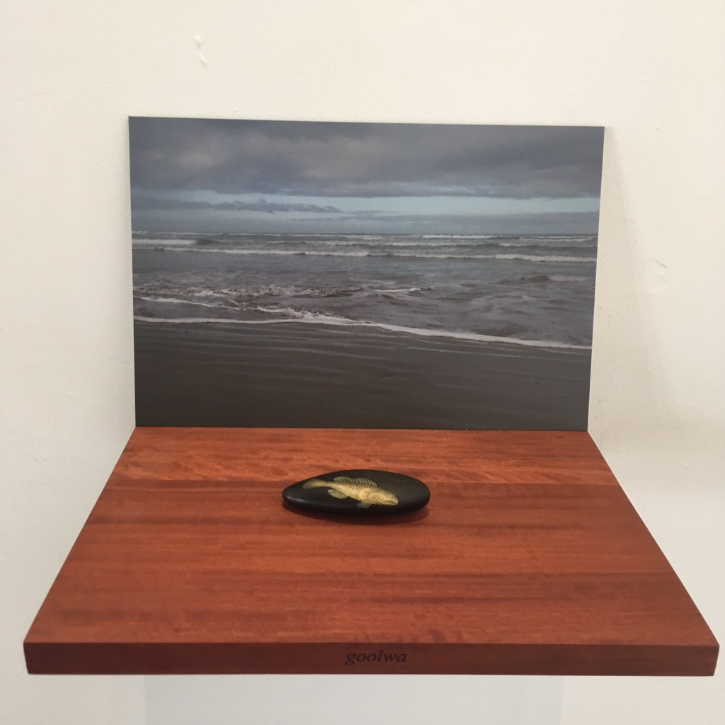 Detail - Goolwa. Fish out of Water – Murray Cod, 9 redgum shelves individually etched, 9 colour photographs, and 9 petrified redgum forms and gouache. Each component measures, approximately 23h x 30w x 25d cm, overall dimensions variable, 2015
