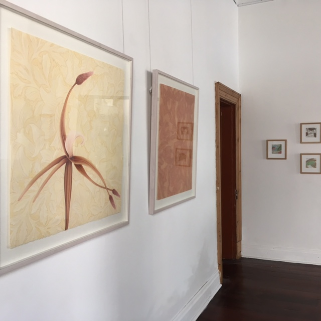 "Installation View – Wallflower – Precious Blossom, pastel on paper, 80h x 80w cm, 2010, Wallflower – Meow, make me purr, pastel on paper, 80h x 70w cm, 2011. Fish out of Water – A Visitor, gouache, and pages from ""The Reader's Digest Complete Atlas of Australia"" 1968 edition, 12 x 12 cm, 2014. Fish out of Water – Eucalypt, gouache, gum leaves, and pages from ""The Reader's Digest Complete Atlas of Australia"" 1968 edition, 12 x 12 cm, 2014. Fish out of Water – Fishing, gouache, gum leaves, and pages from ""The Reader's Digest Complete Atlas of Australia"" 1968 edition, 12 x 12 cm, 2014."
